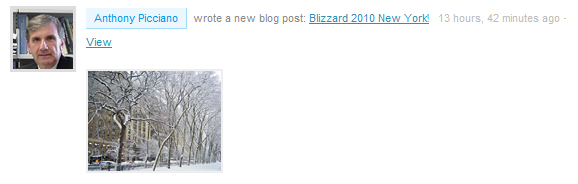 Blizzard 2010 New York!